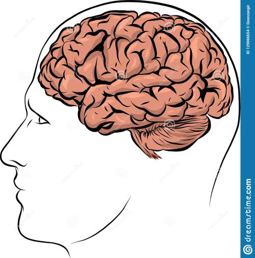 small resolution of human face brown silhouette with brain inside