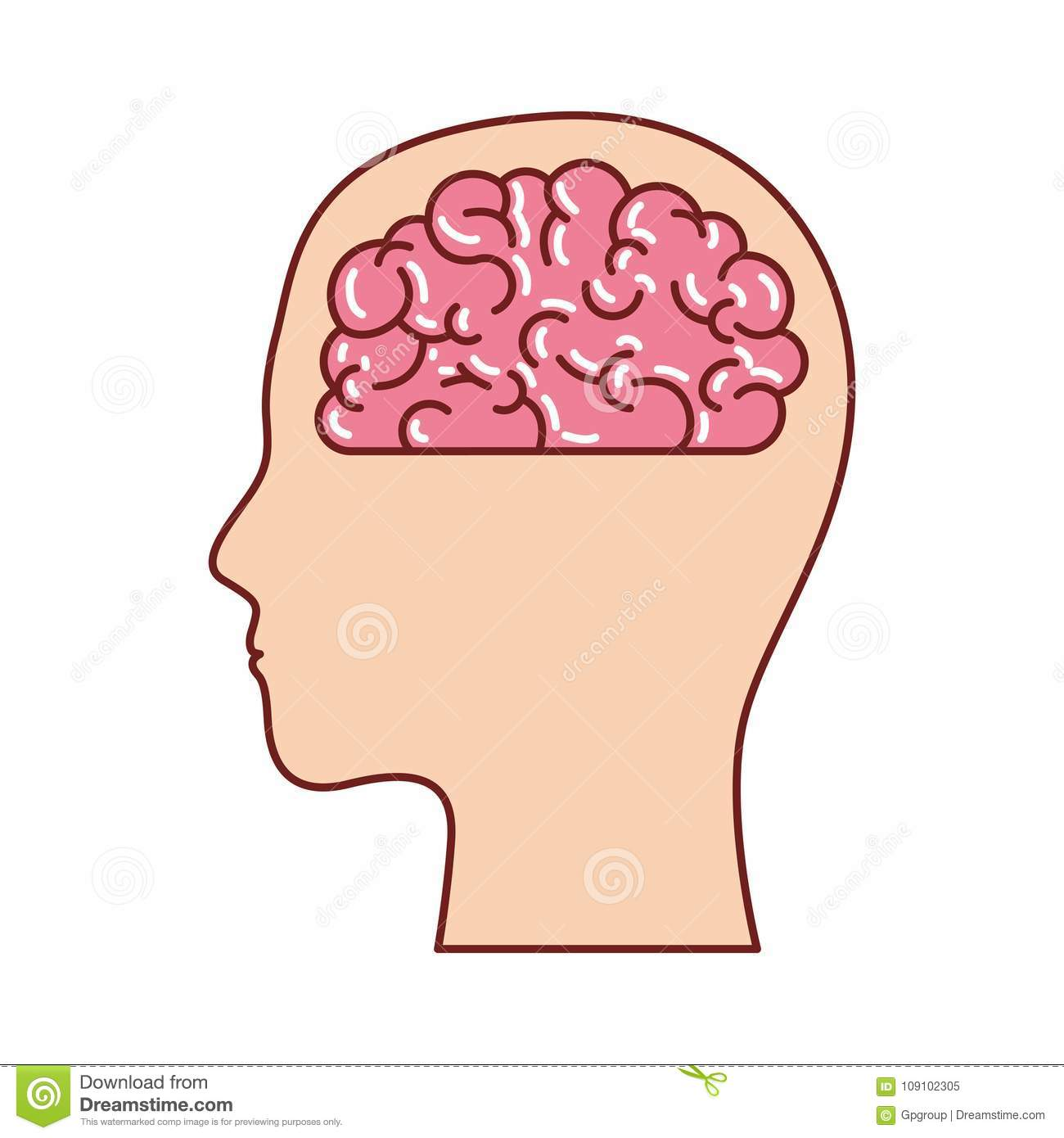 hight resolution of human face silhouette with brain inside in colorful silhouette with brown contour