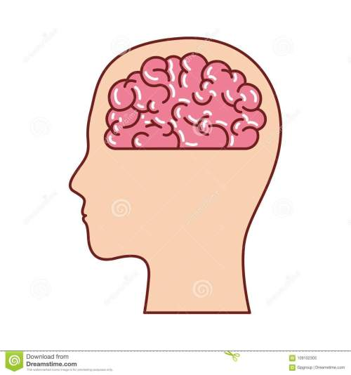 small resolution of human face silhouette with brain inside in colorful silhouette with brown contour