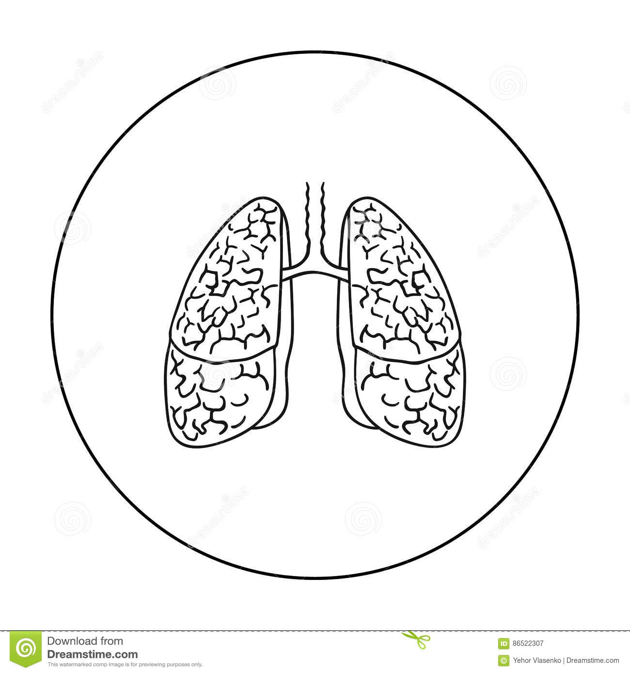 Human Lungs Isolated Icon Vector Illustration
