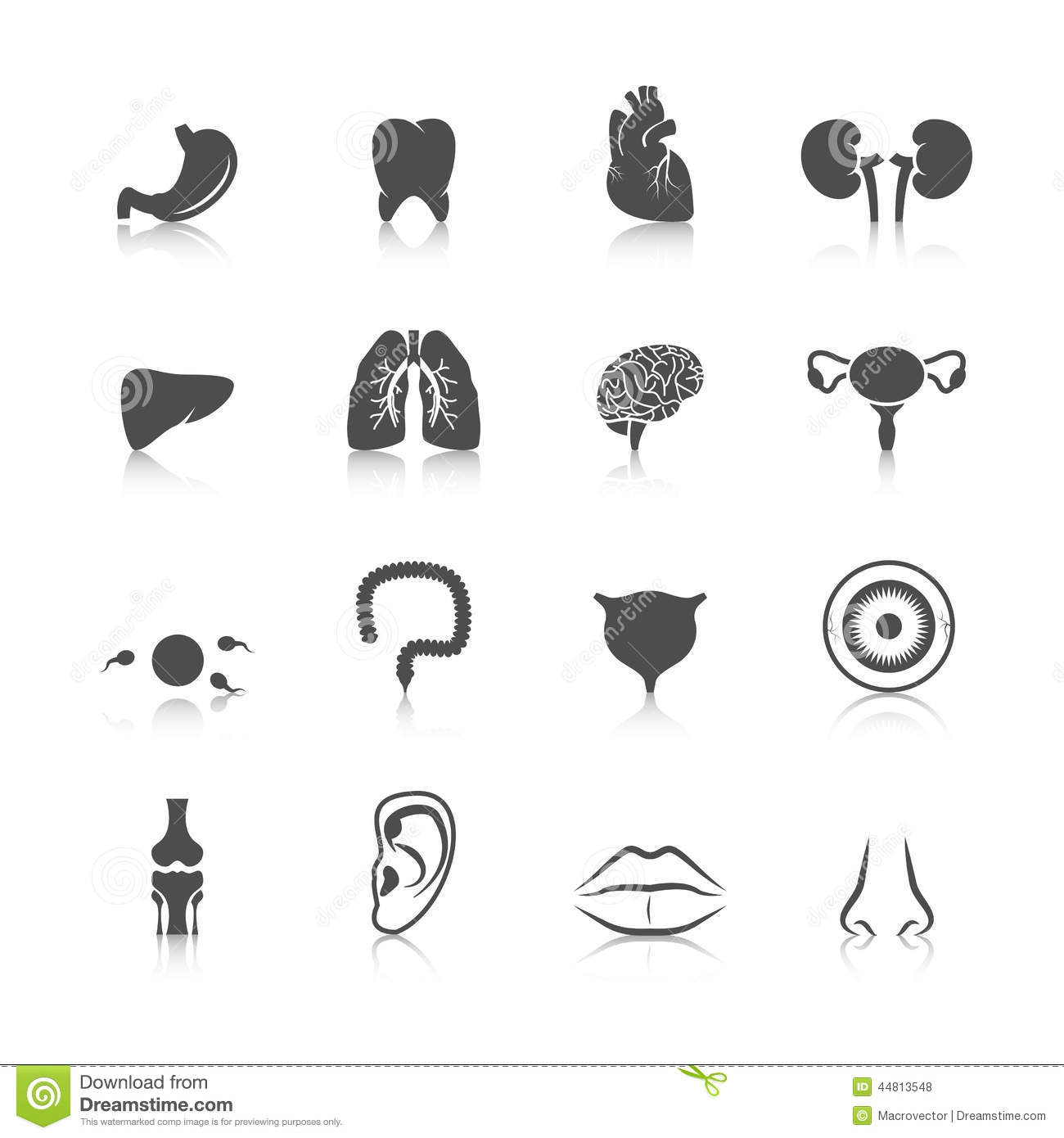 Human Internal Organs Black Icons Set Vector Illustration