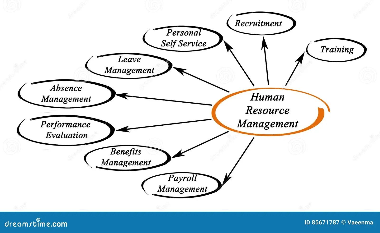 Human Resource Management stock illustration. Illustration