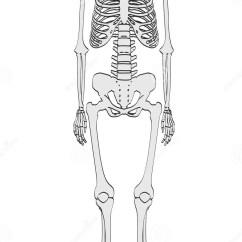 Keystone Arch Diagram Eye Labeling Quiz Human Skeleton Cartoon – Defenderauto.info