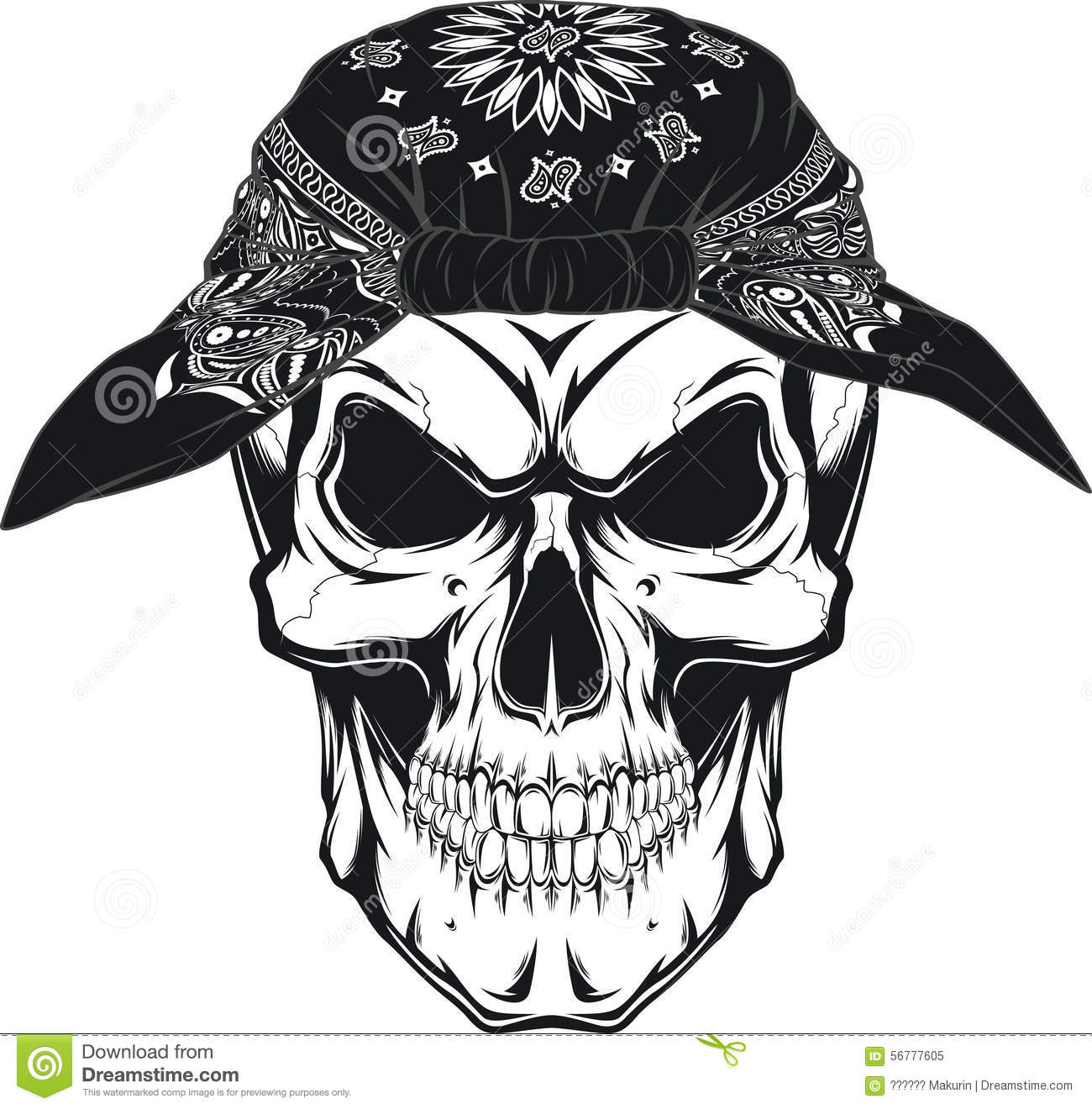 Human Skull Stock Vector Illustration Of Bone Human