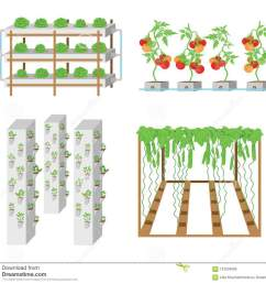 hydroponic vegetable growth system illustration [ 1300 x 1195 Pixel ]