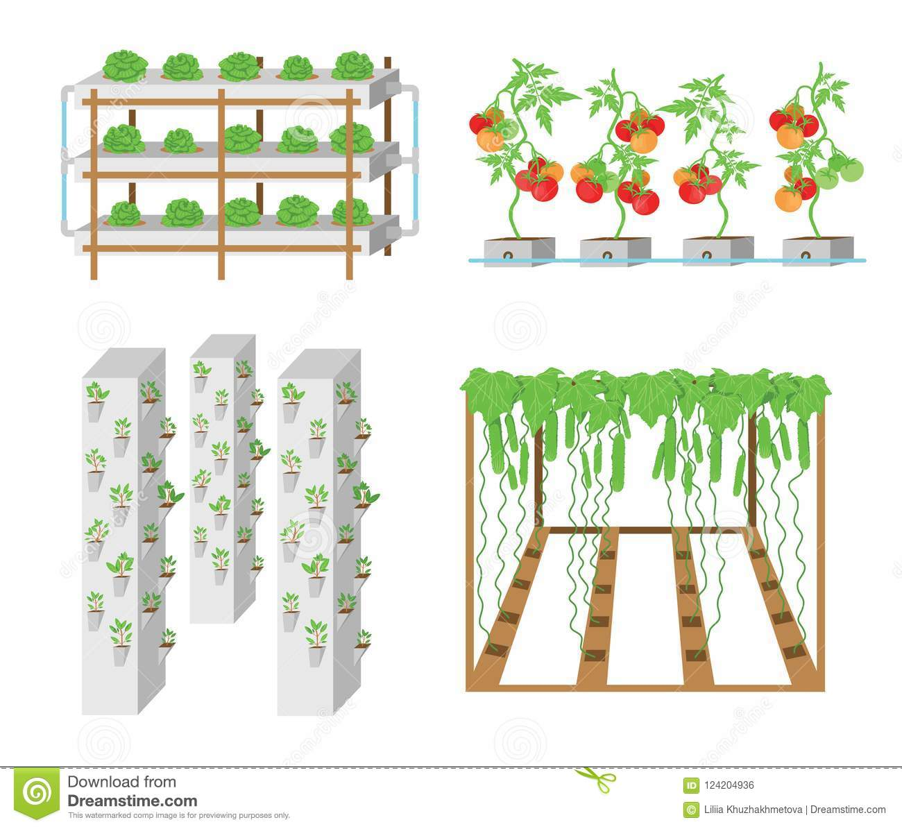 hight resolution of hydroponic vegetable growth system illustration