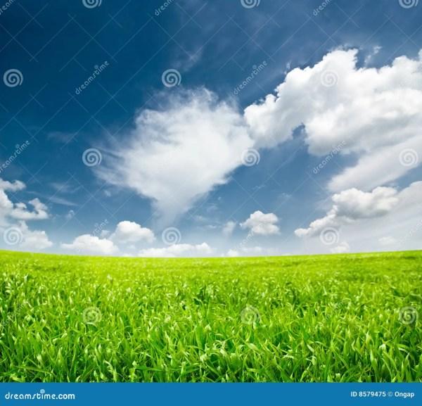 idyllic landscape royalty free