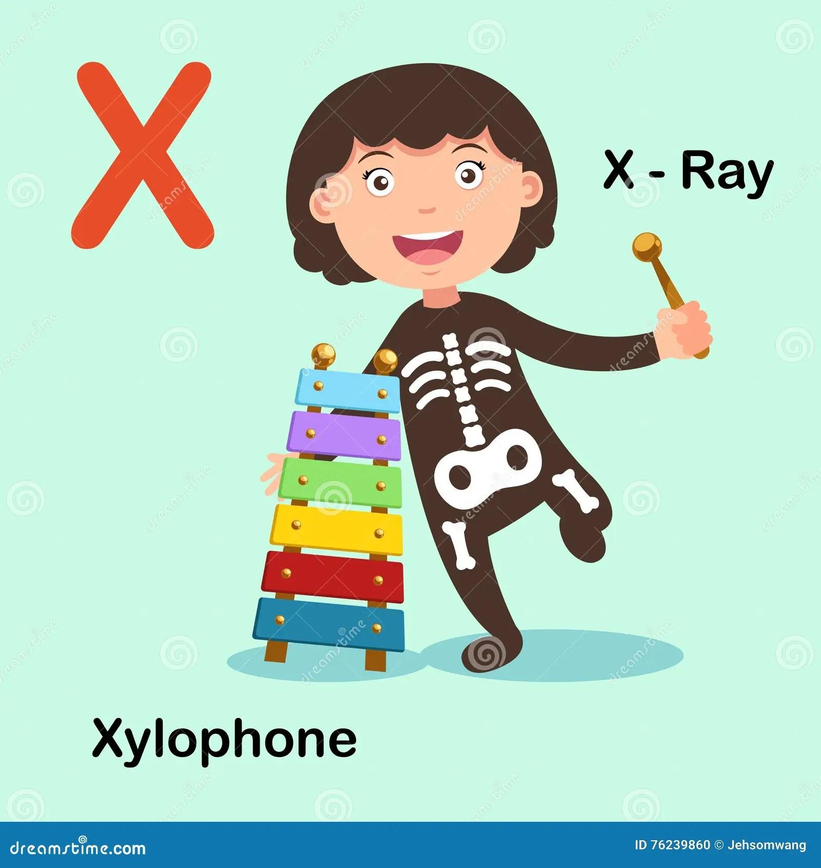 Illustration Alphabet Letter X X Ray Xylophone Stock Vector