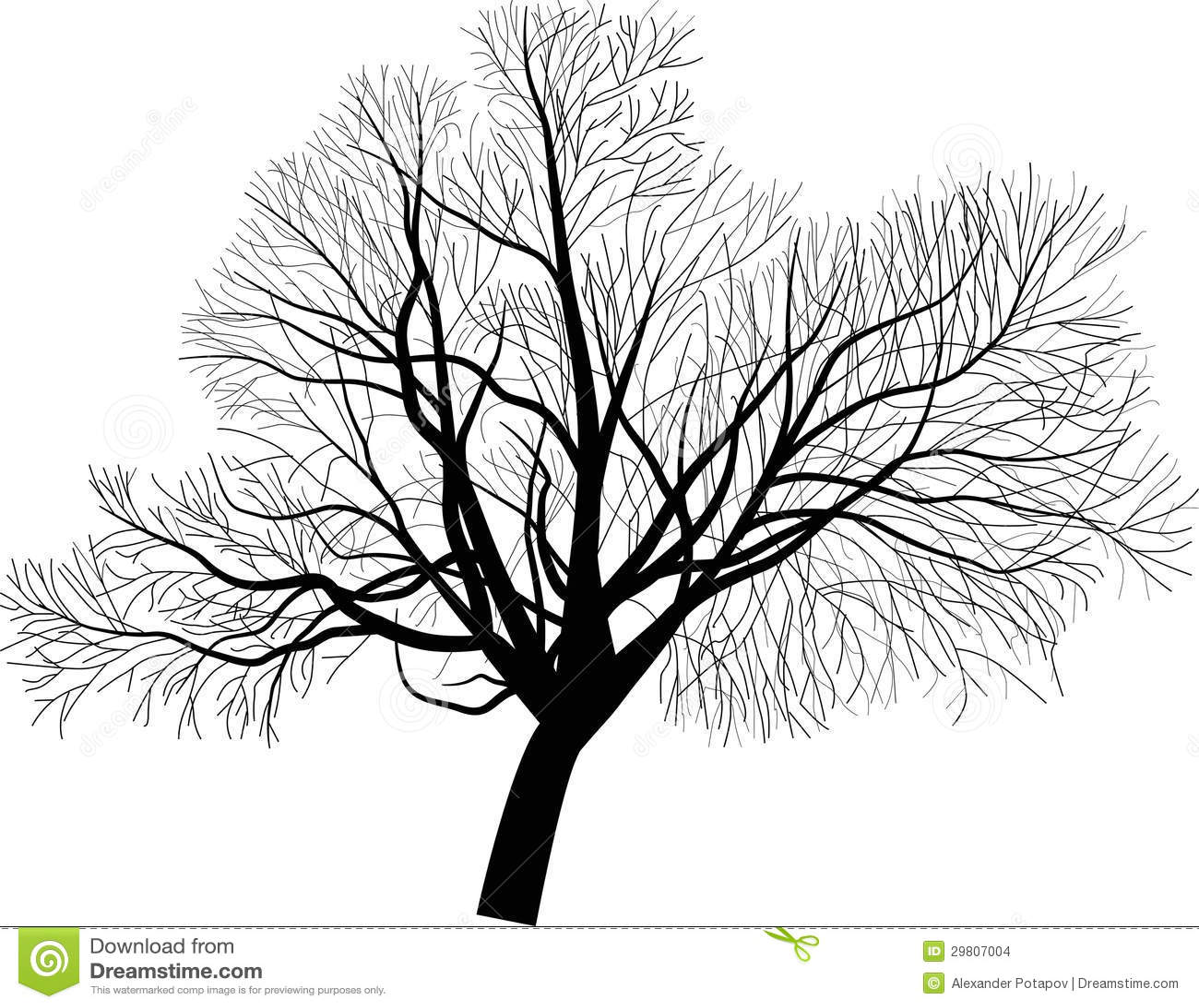 Isolated Large Bare Tree Illustration Stock Images