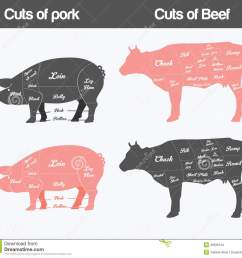 illustration of beef pork cuts chart stock vector illustration of cuts of pork american british meat diagrams stock vector [ 1300 x 1221 Pixel ]