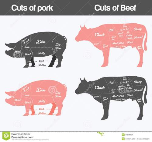 small resolution of illustration of beef pork cuts chart stock vector illustration of cuts of pork american british meat diagrams stock vector