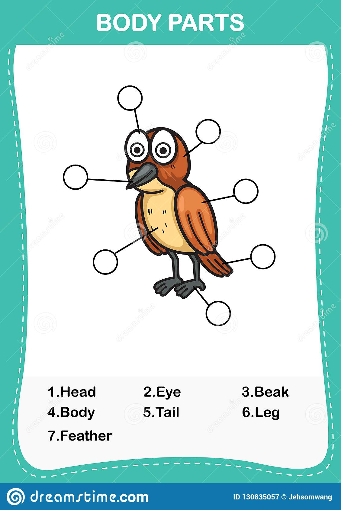 Bird Vocabulary Part Of Body Write The Correct Numbers Of