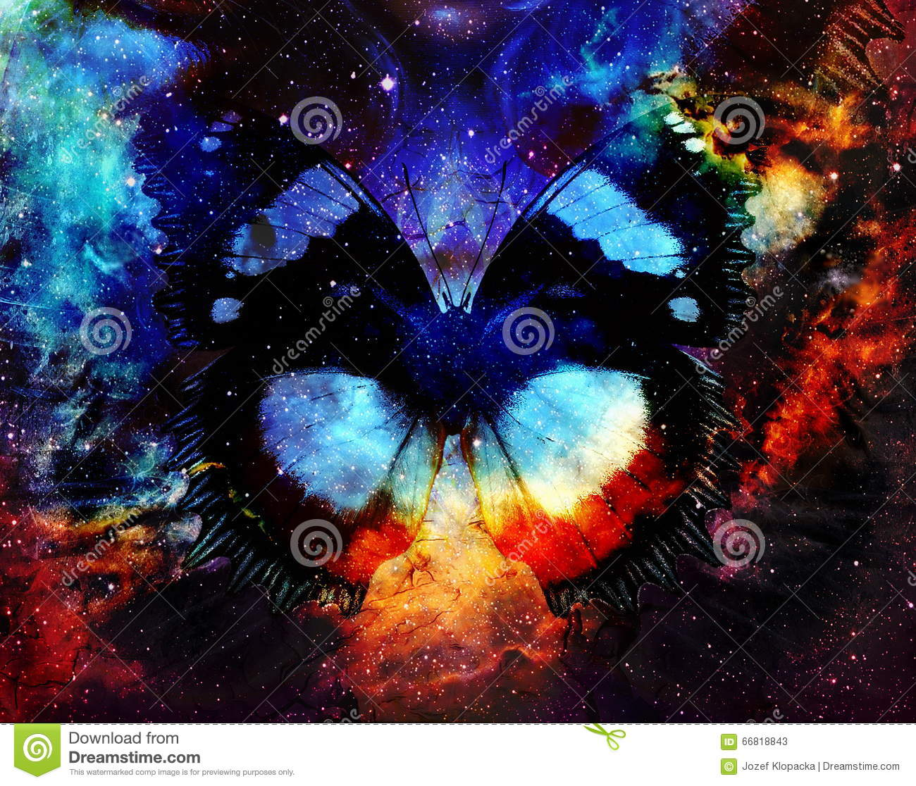 Butterfly In Cosmic Space. Graphic Design And Glass Effect