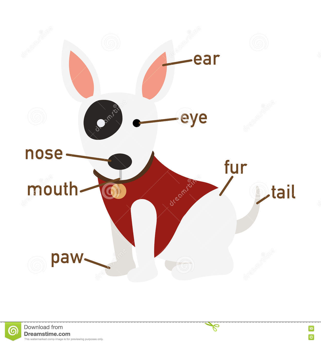 Illustration Of Dog Vocabulary Part Of Body Stock Vector