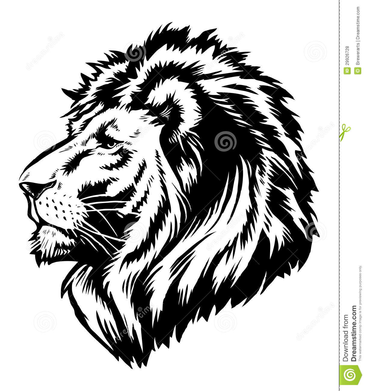 Lion Head Graphic Stock Vector Illustration Of Football