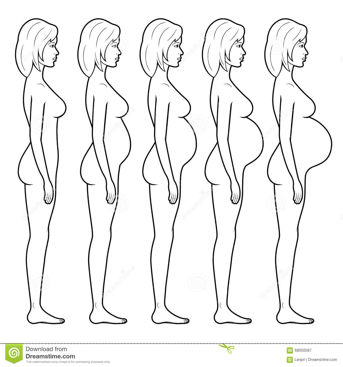 Illustration Of A Pregnant Woman S Figure Stock Vector