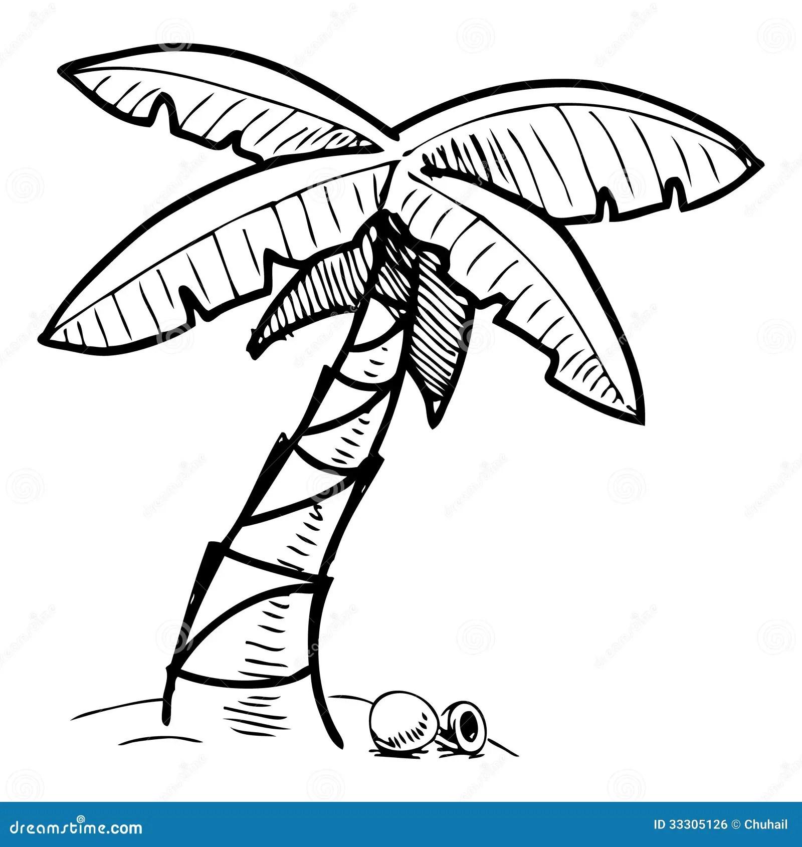 Illustration Tropicale De Croquis De Palmier Image Libre