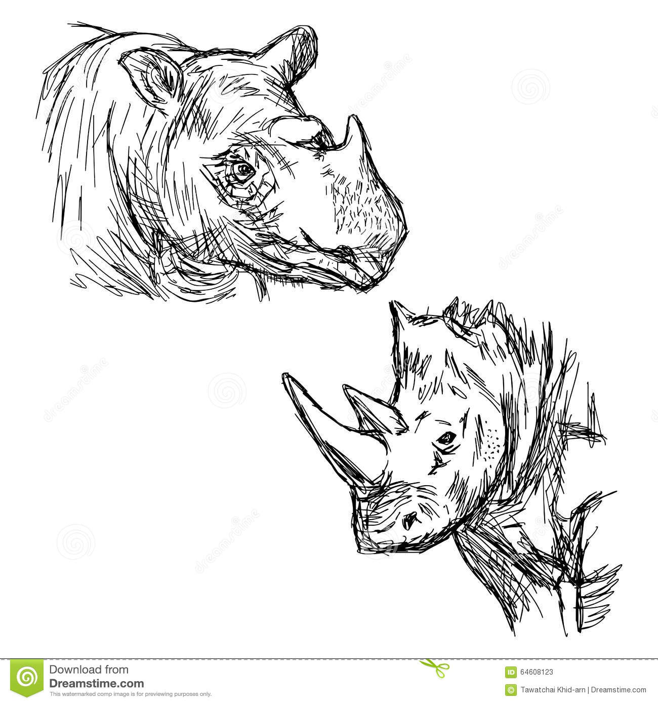 Illustration Vector Hand Drawn Doodle Closeup Rhinoceros