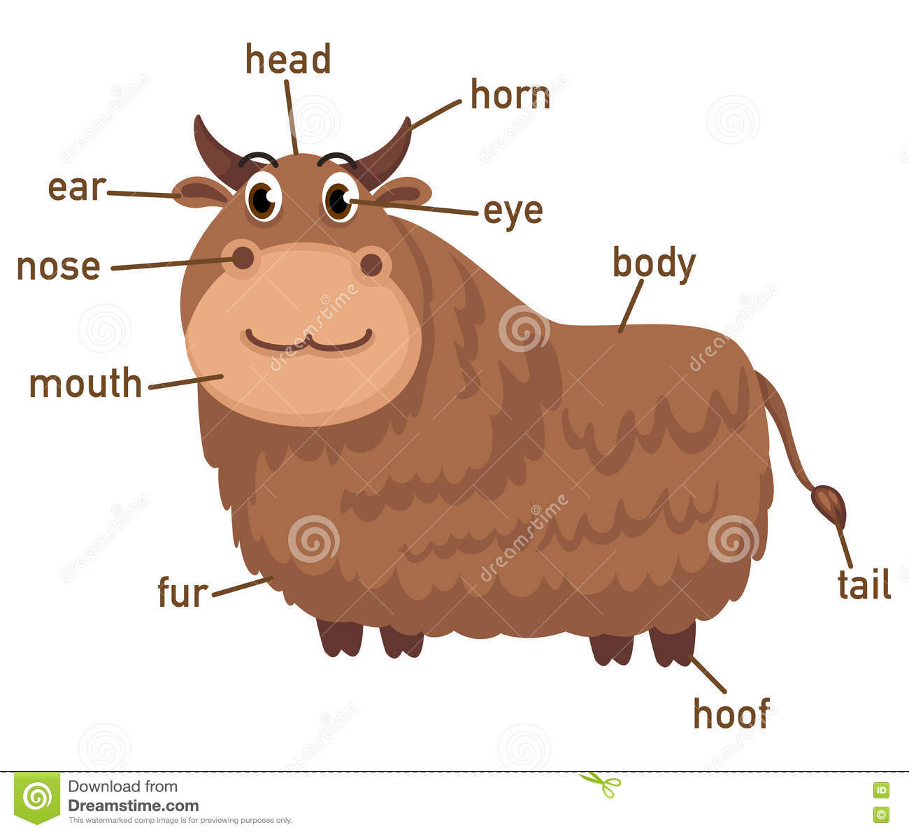 Illustration Of Yak Vocabulary Part Of Body Stock Vector
