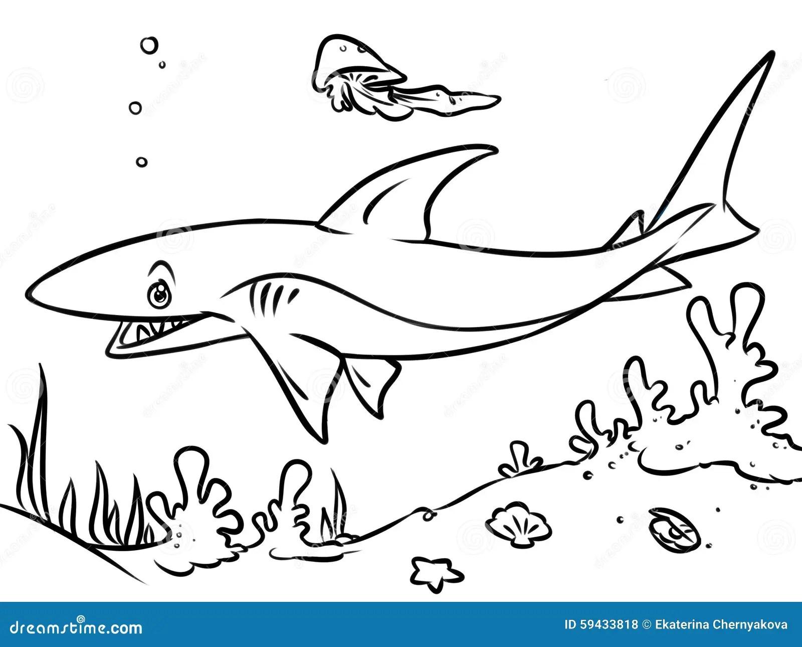 Illustrazione Di Contorno Dello Squalo Dell Oceano Della