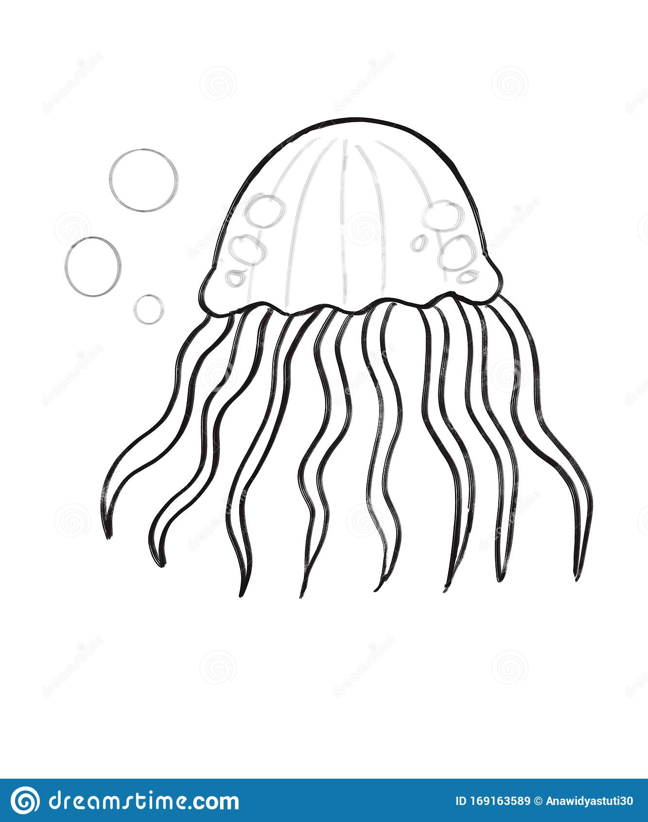 Ilustration Drawing Of Jelly Fish Coloring For Children
