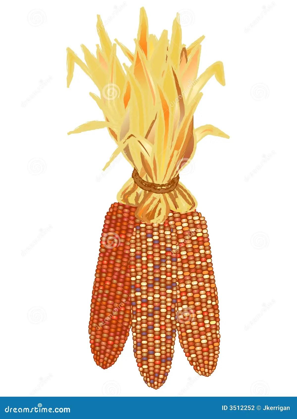 Indian Corn Stock Vector Image Of Design Shape Blue