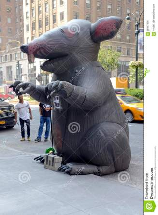 Image result for scabby rat