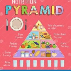 New Food Pyramid Diagram Ecu Wiring Toyota Corolla Healthy Plate Chart Vector Illustration