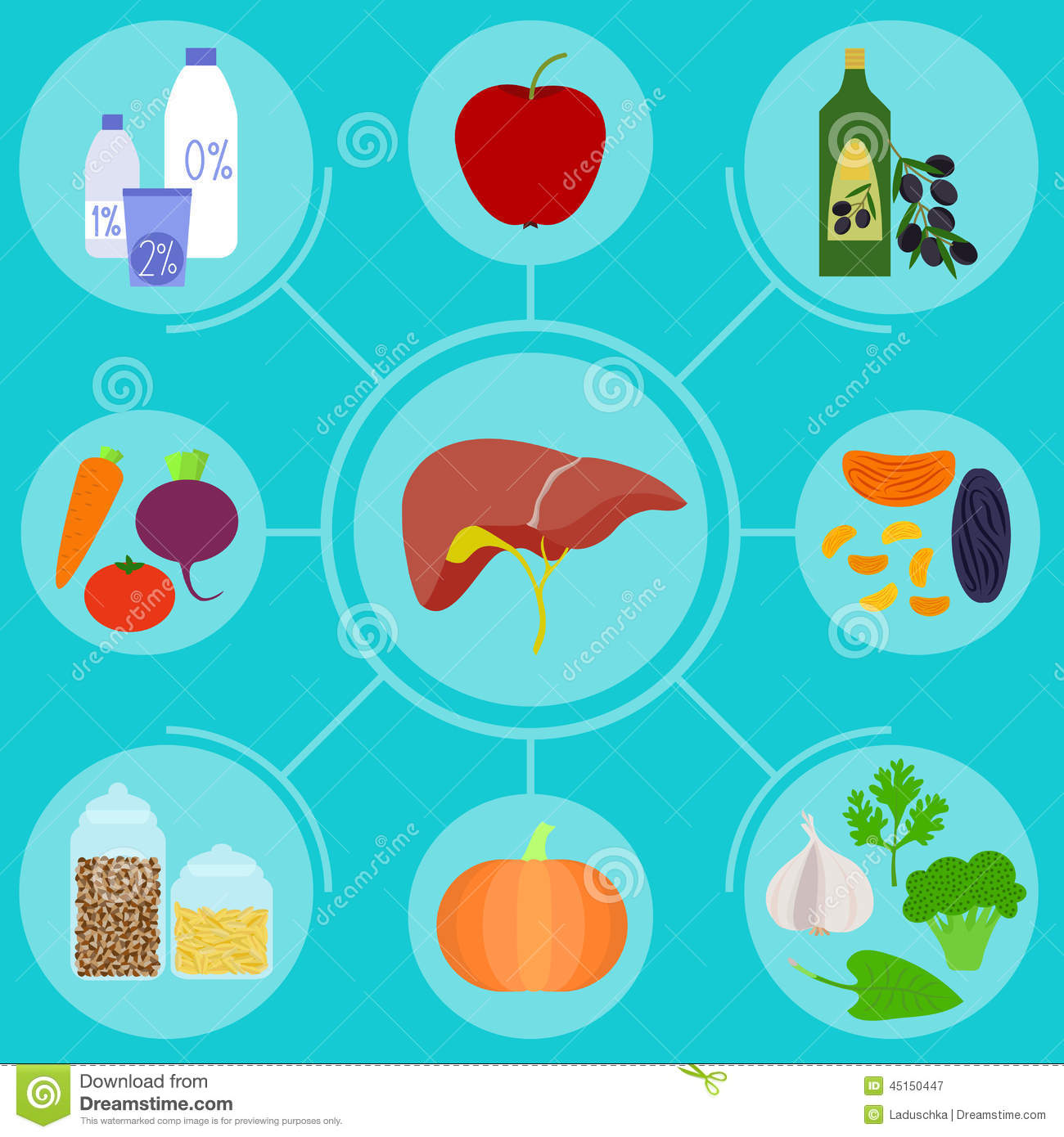 infographics of food for healthy liver stock vector image 45150447