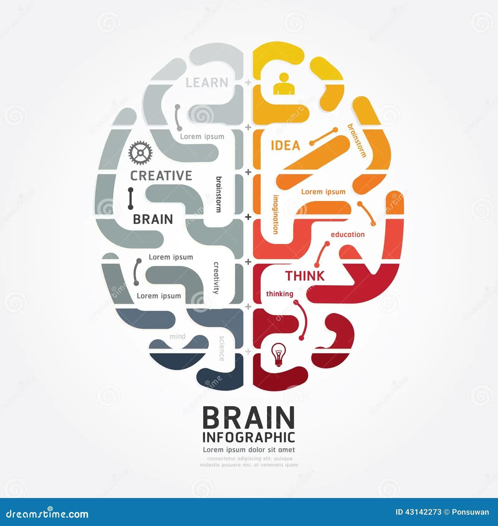 Infographics Vector Brain Design Diagram Line Monochrome