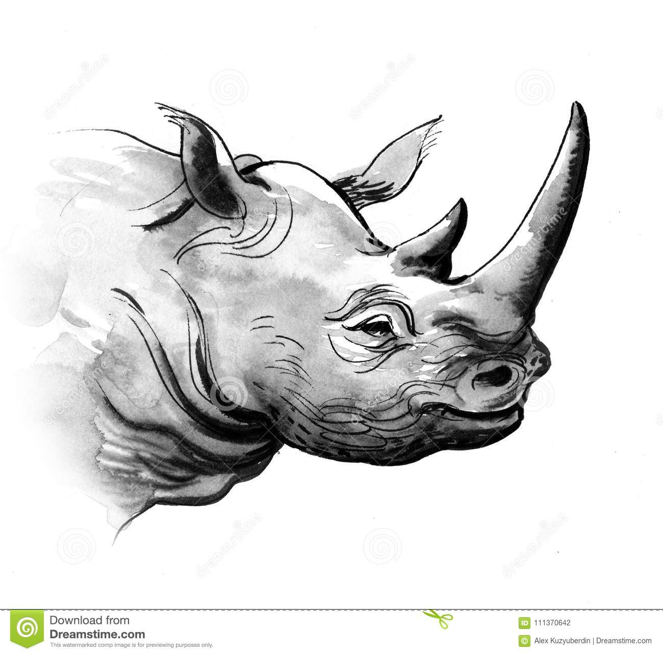 grey rhino stock illustration