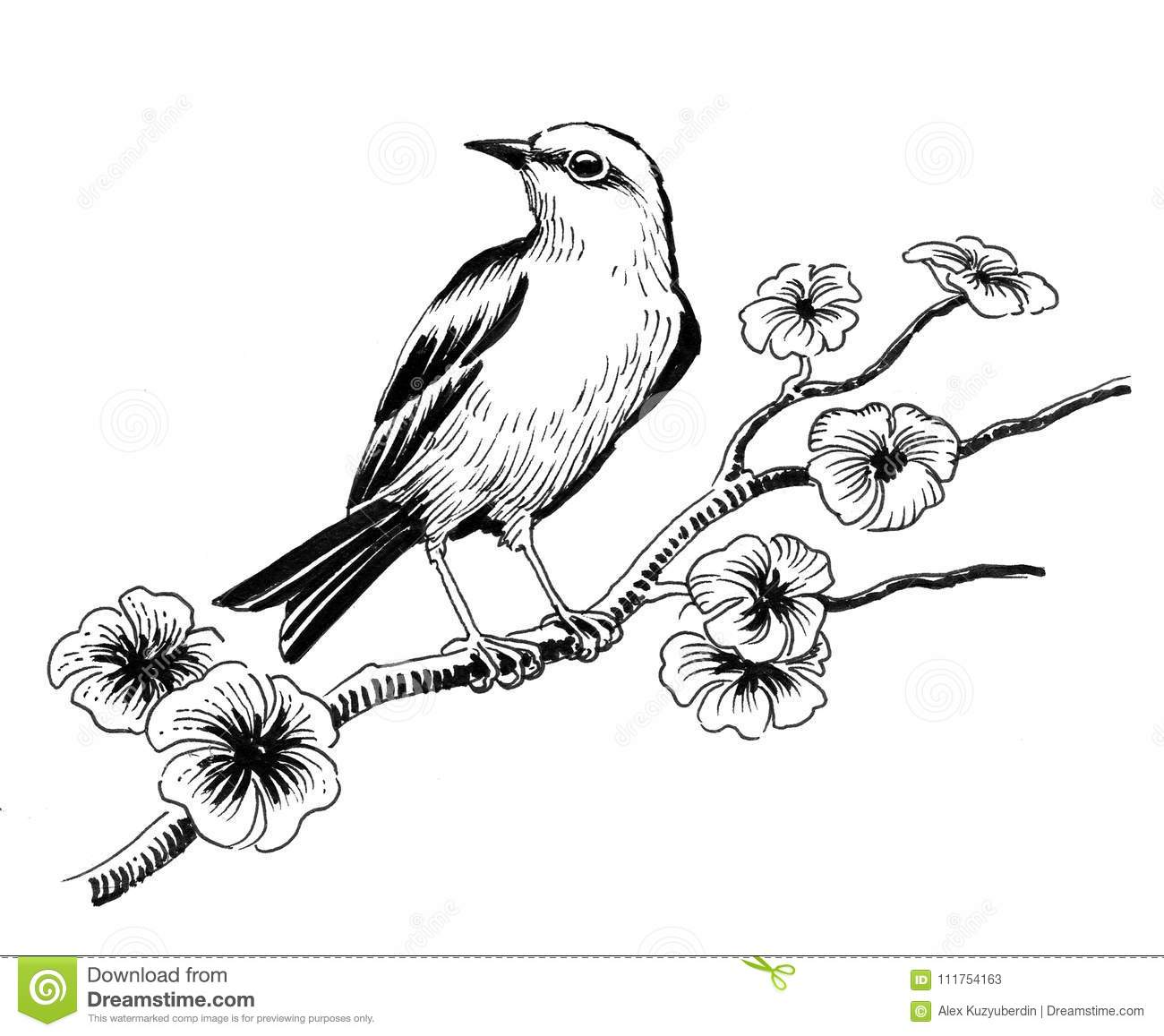 Bird on a tree stock illustration. Illustration of white