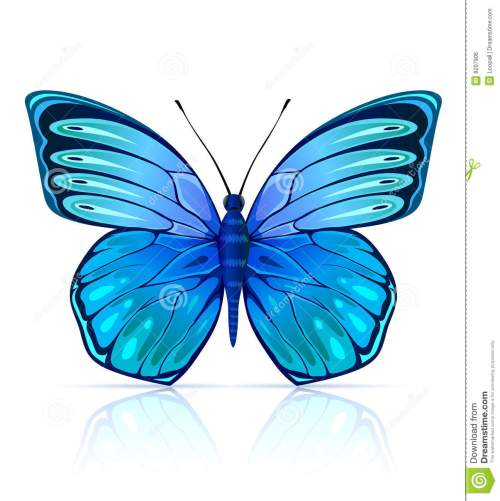 small resolution of insecto azul mariposa aislado monarch butterfly clipart cartoon fly