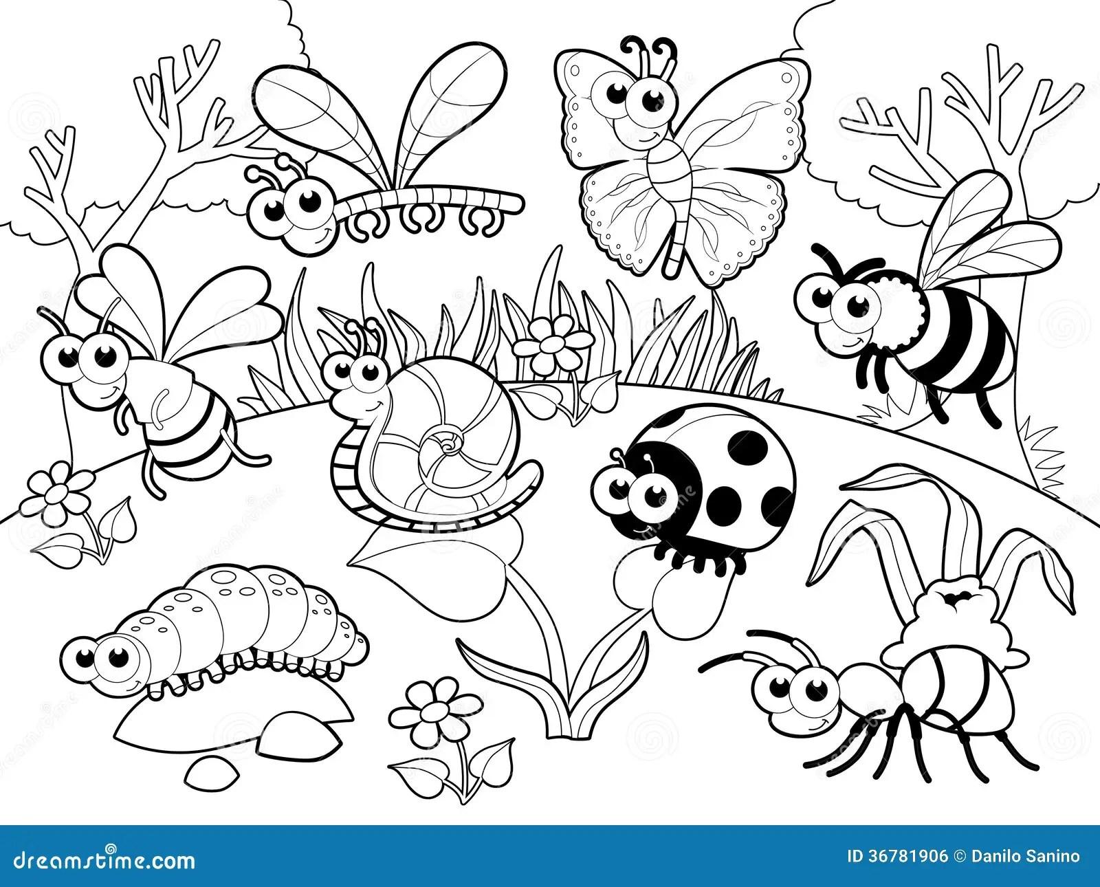 Insectos 1 Caracol Con El Fondo En Blach Y Blanco