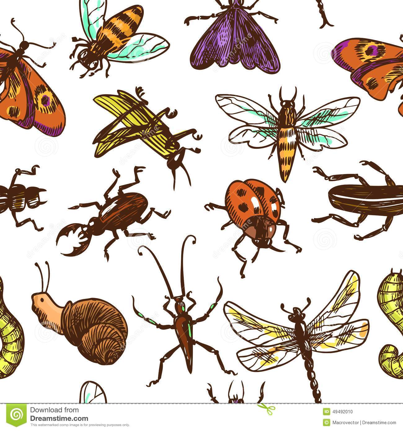 Insects Sketch Seamless Pattern Color Stock Vector