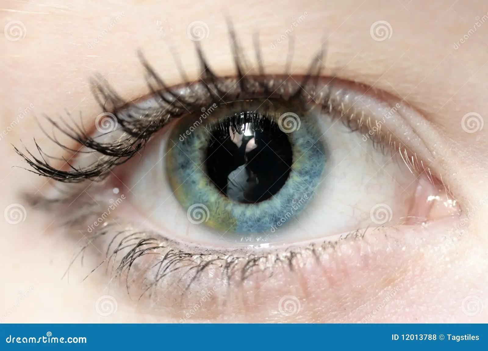Inside The Eye Stock Photo Image Of Iris Reflection