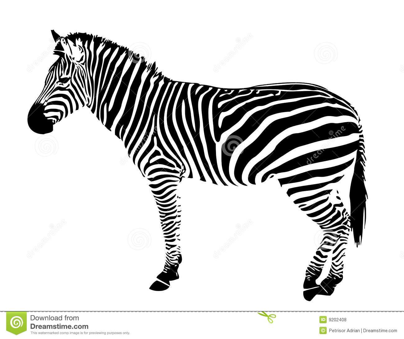 Isolated Zebra Silhouette Vector Black Stripes Stock
