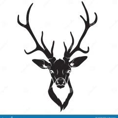 Diagram Of Whitetail Deer Skull 7 Flat Trailer Wiring Isolerat Hjorthuvud Stock Illustrationer Illustration Av