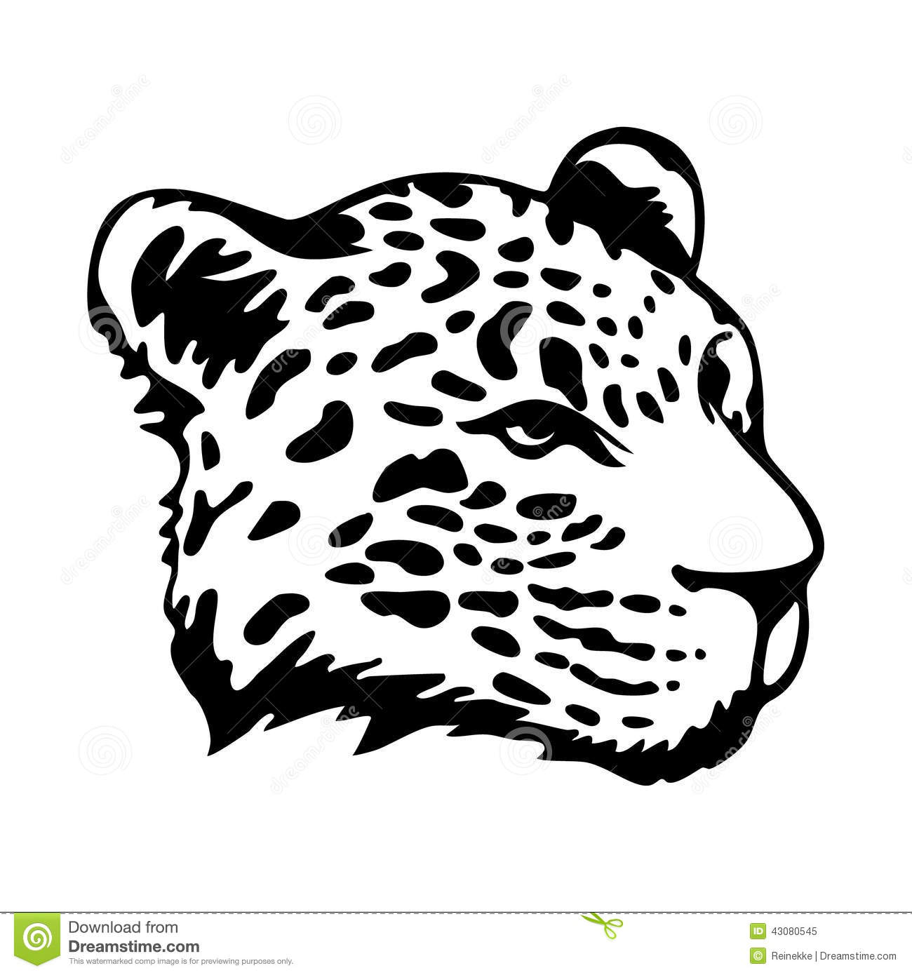 Jaguars Head Stock Vector Illustration Of Graphic Authority