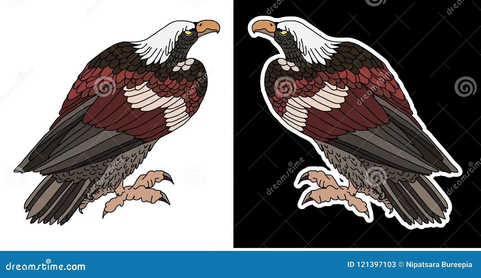 Japonés Tradicional Dibujado Mano Eagle Del Oro El Atacar De Eagle