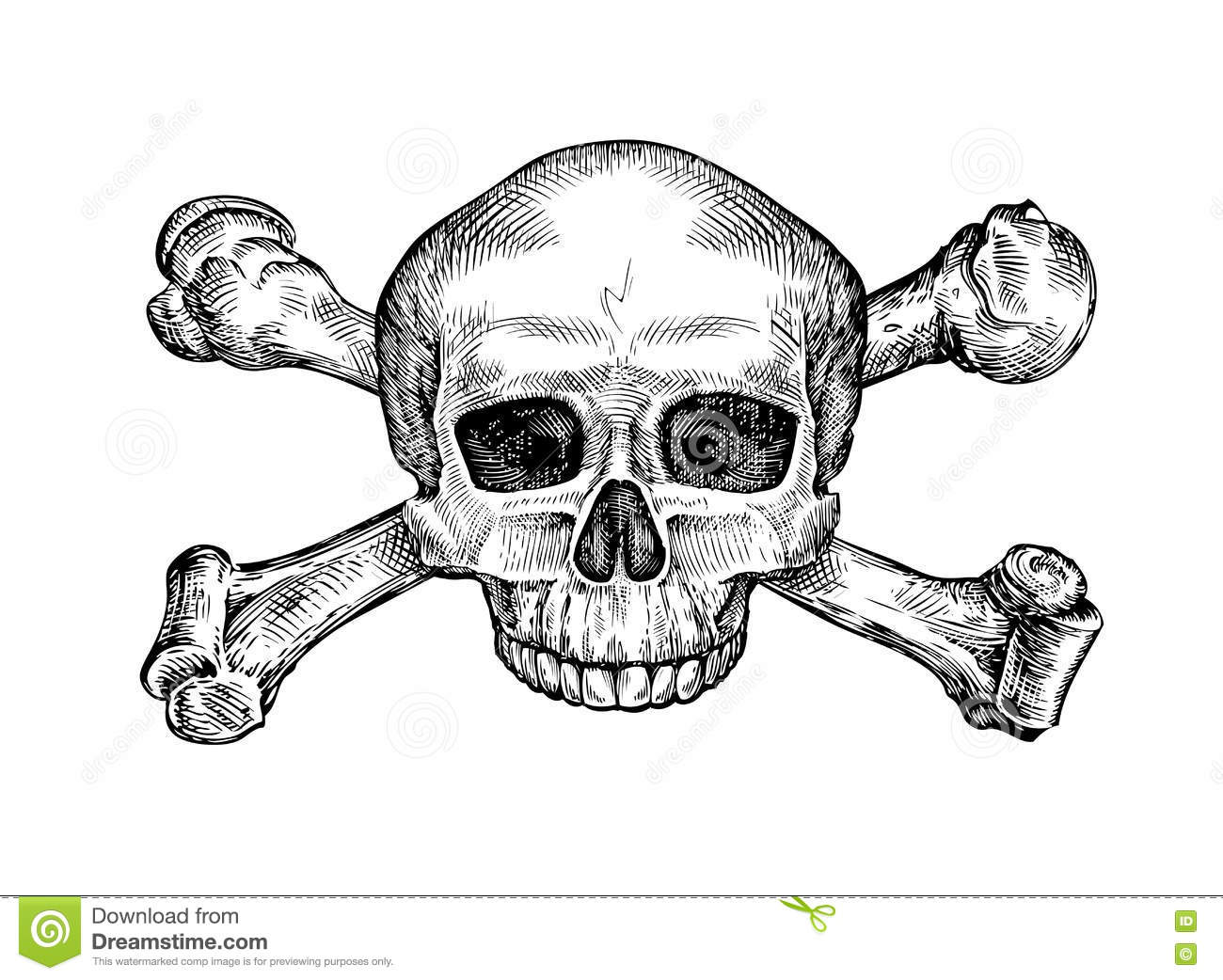 Skull And Crossbones Vector Royalty Free Stock Photo