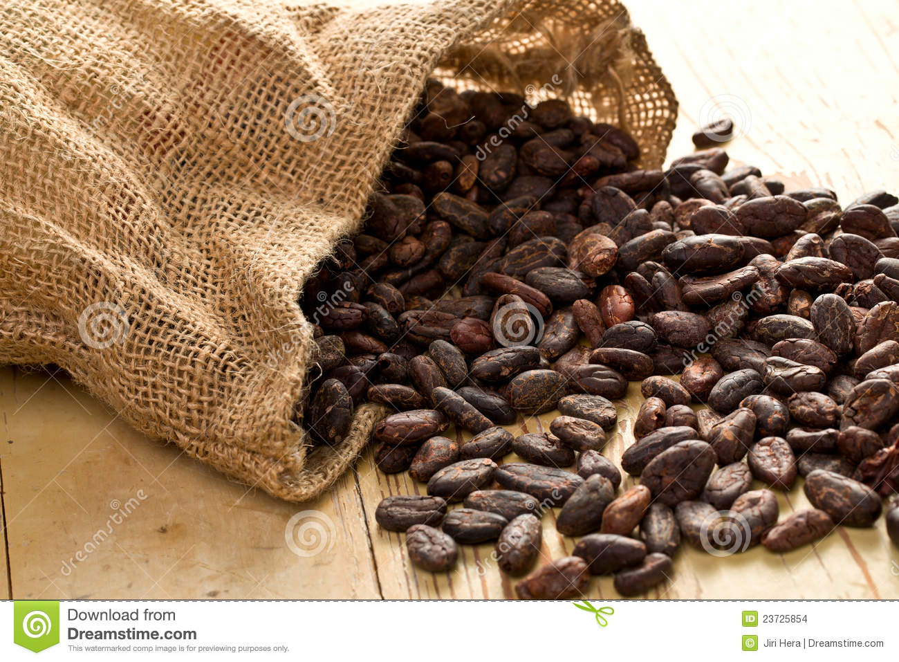 Jute bag with cocoa beans stock photo Image of stack