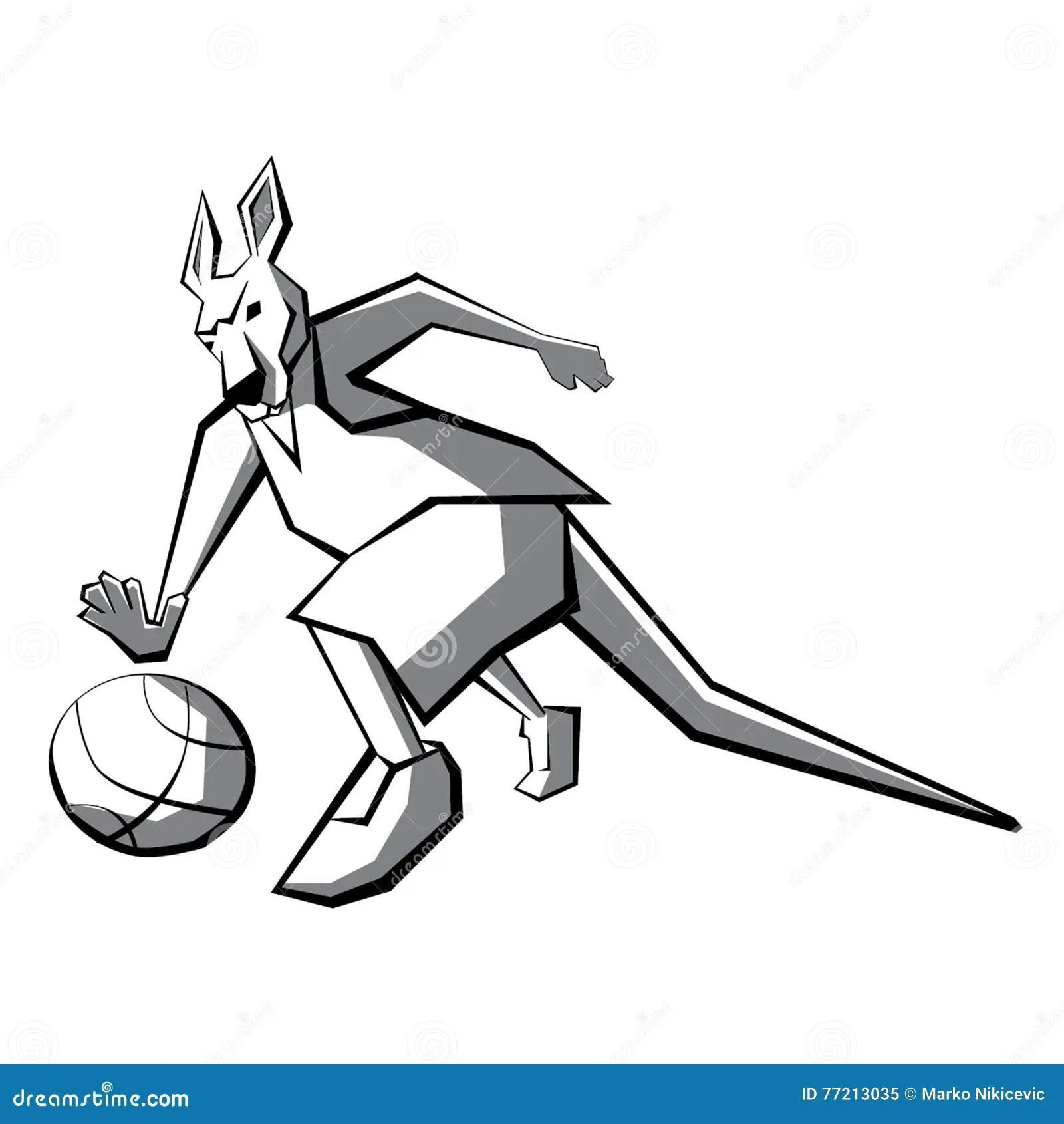 Kangaroo Basketball Player Stock Vector Image Of Wild
