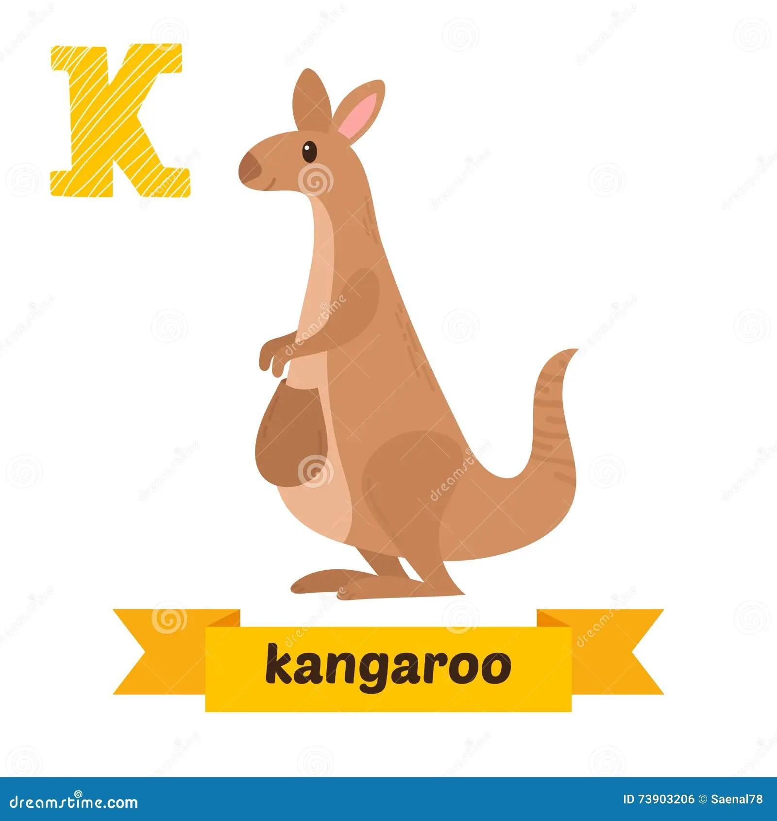 Kangaroo K Letter Cute Children Animal Alphabet In