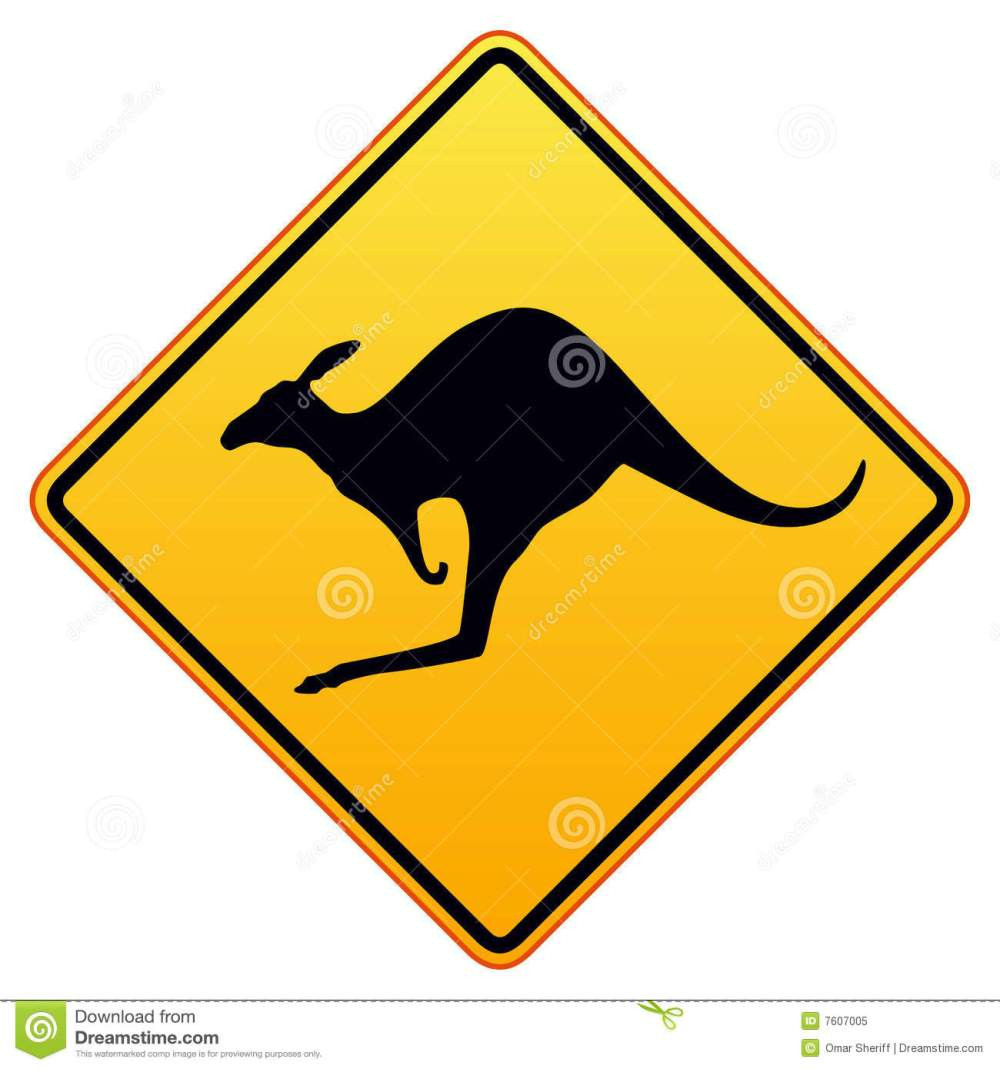 medium resolution of kangaroos ahead