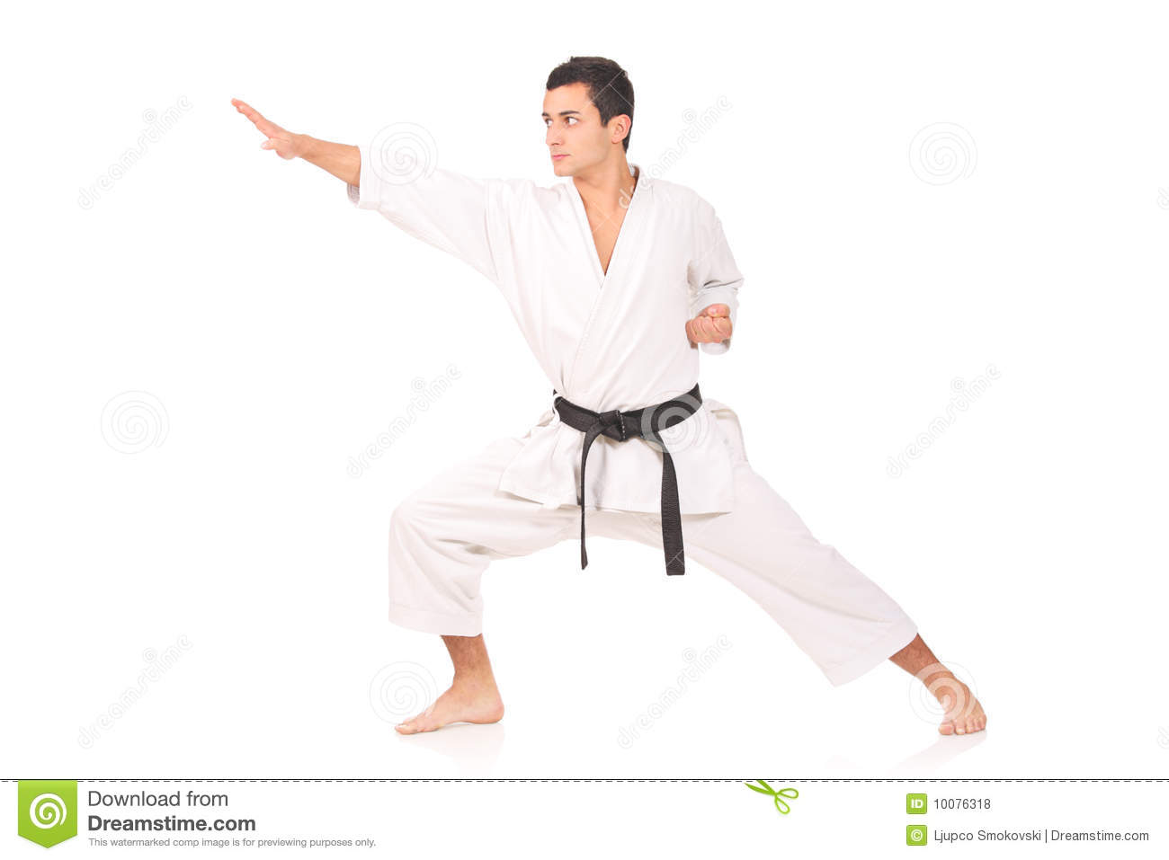 Karate Man Royalty Free Stock Photos Image 10076318