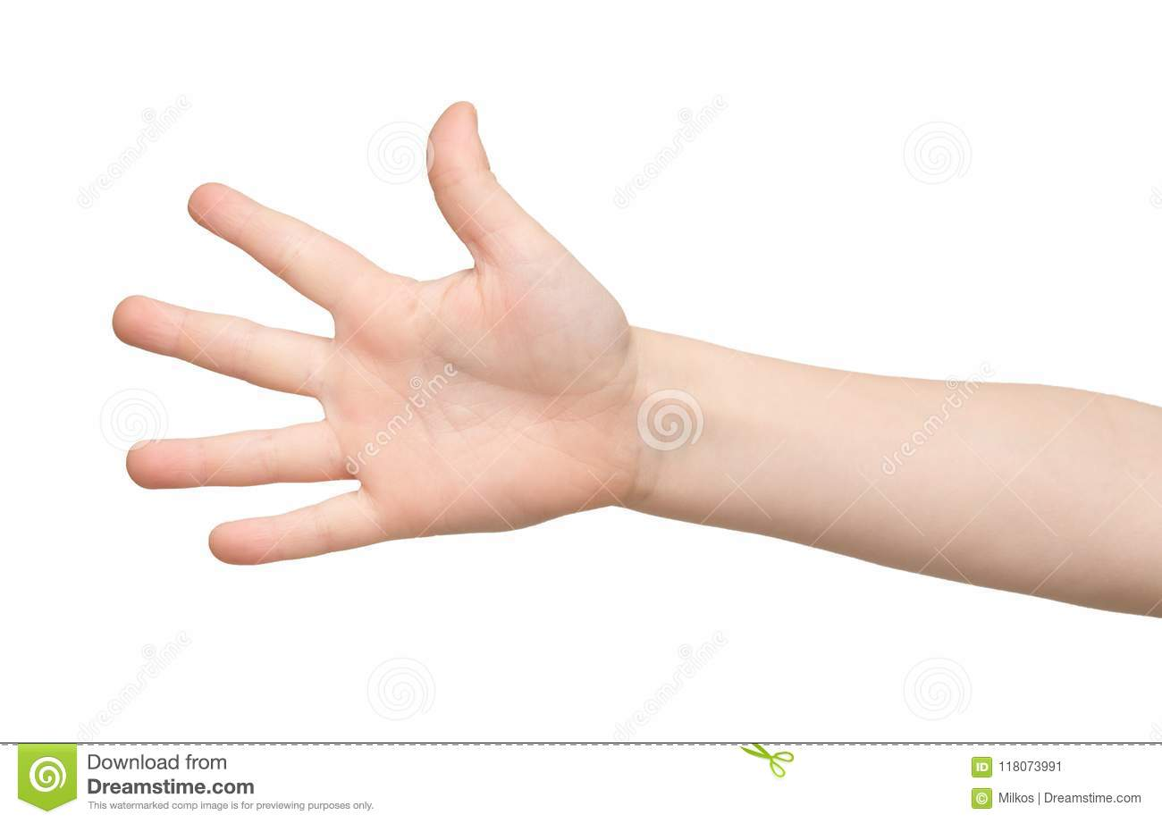 Kid Hand Shows Number Five On White Background Stock Image