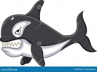 whale killer cartoon illustration vector dreamstime