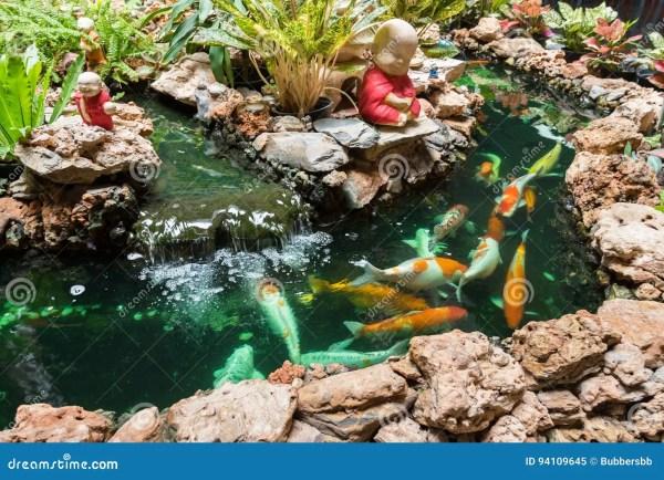 Koi Carps Fish Swimming In Pond Wat Borom Raja