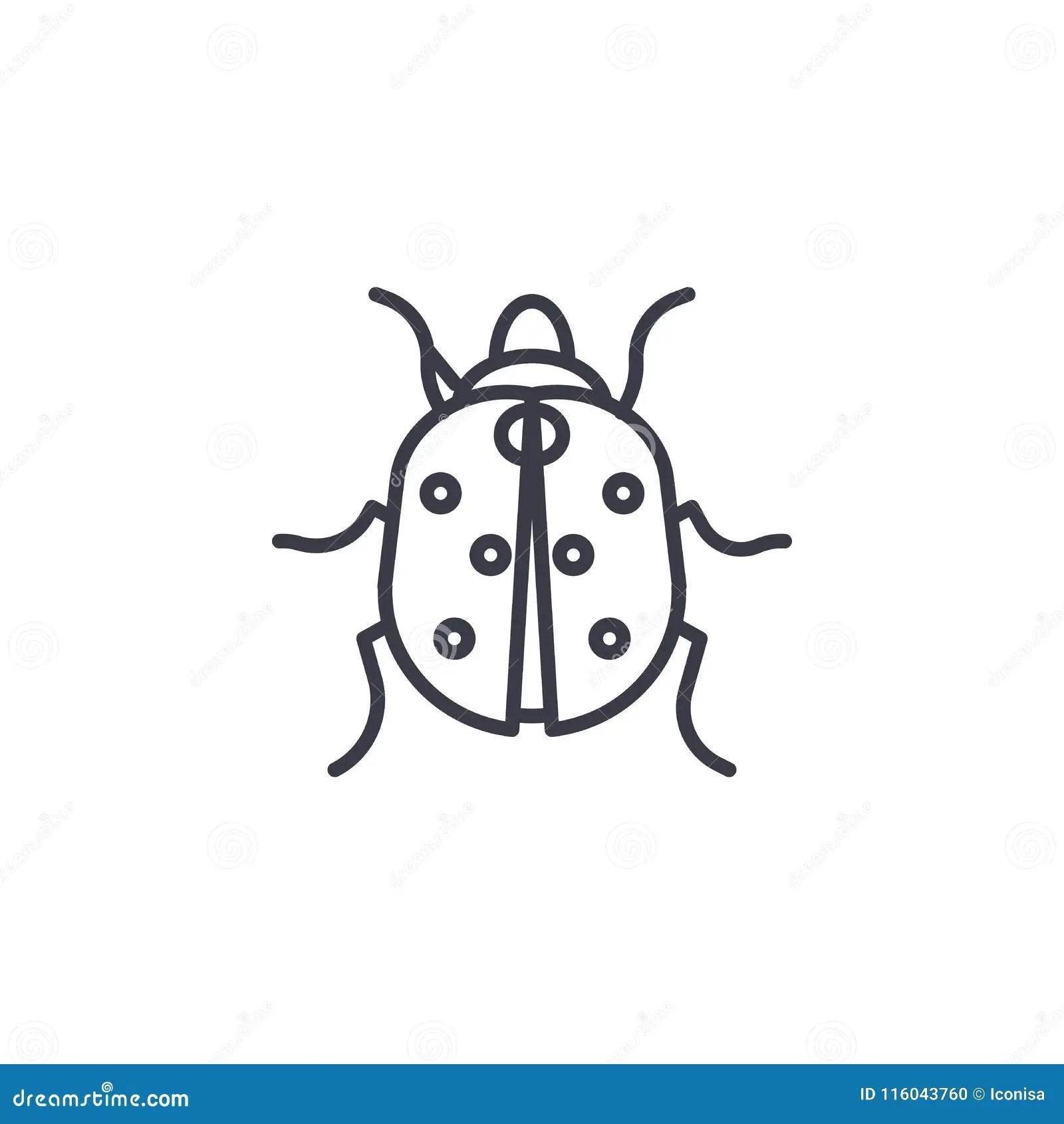 Cute Ladybug On Green Leaf Vector Vector Illustration